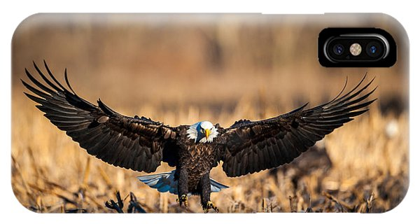 Wing Span IPhone Case