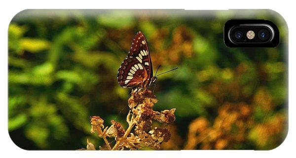Wingo Butterfly IPhone Case