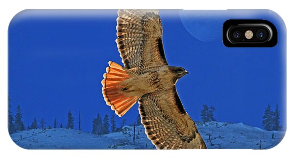 Red Tail Hawk iPhone Case - Wings by Donna Kennedy