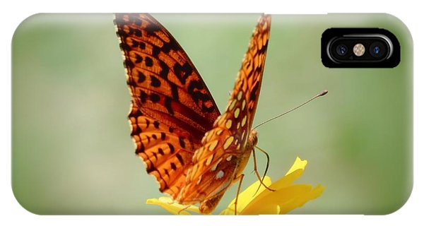 Wings Up - Butterfly IPhone Case