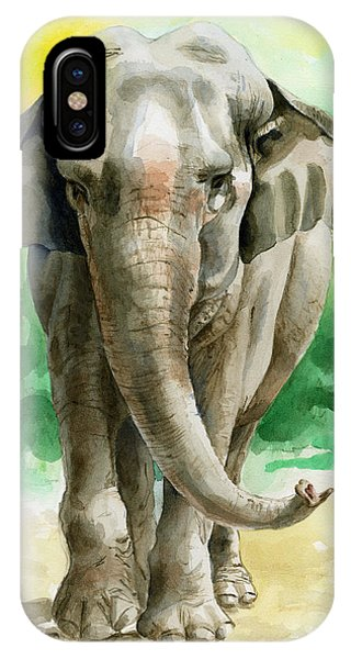 Animal iPhone Case - Winky by Galen Hazelhofer