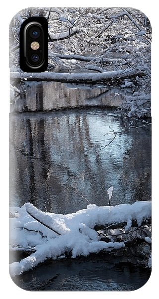 Winter At The Brook IPhone Case