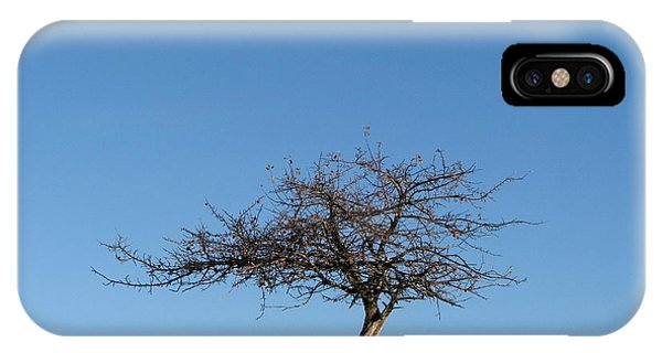 Winter At The Crabapple Tree IPhone Case