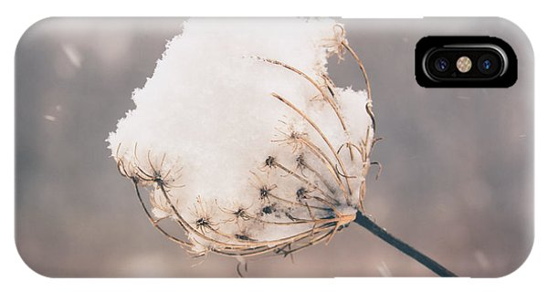 Winter Beauty IPhone Case