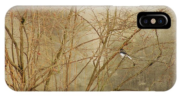 Winter Bird At The Audubon IPhone Case