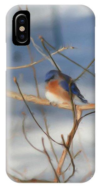 Winter Bluebird Art IPhone Case