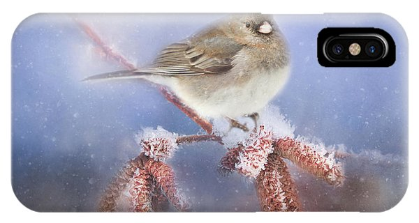 Winter Chill IPhone Case