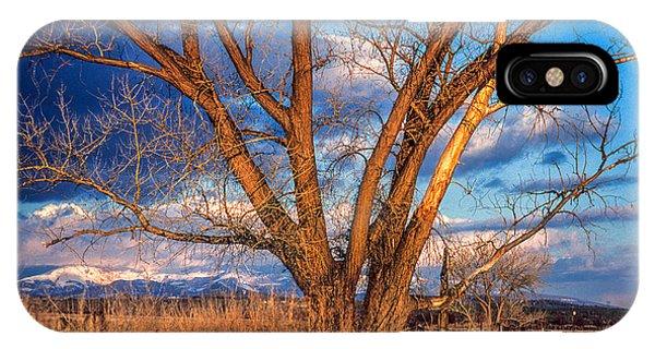 Winter Cottonwood Ranch Landscape Colorado IPhone Case