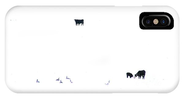 Winter, Feed Zone IPhone Case