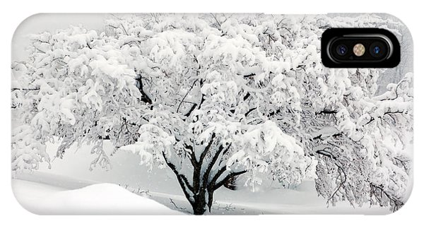 Winter Fluff IPhone Case
