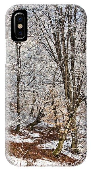 Winter Forest Phone Case by Gabriela Insuratelu