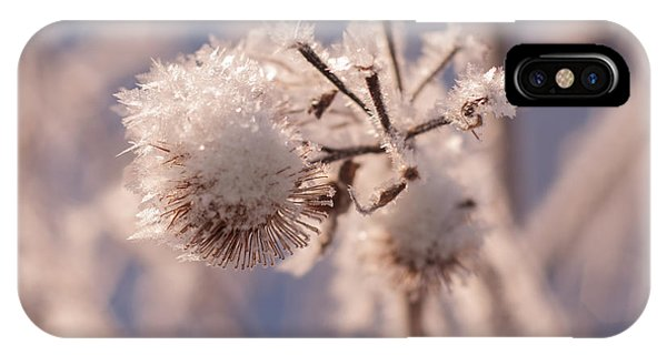Winter Frost IPhone Case
