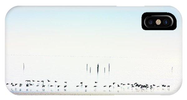 Winter Geese Frozen Ice IPhone Case