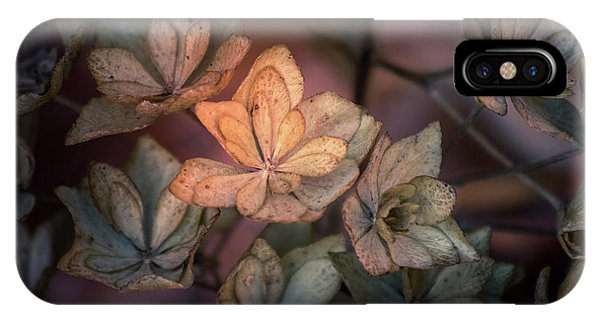 IPhone Case featuring the photograph Winter Glow by Allin Sorenson