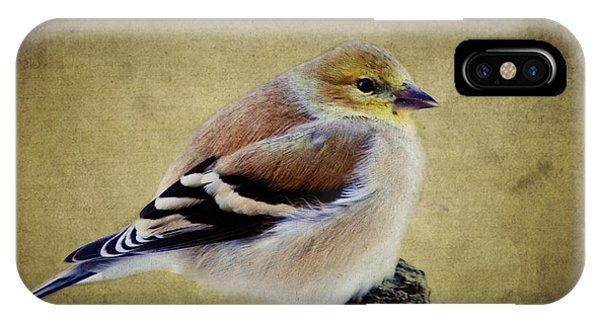 Winter Goldfinch IPhone Case