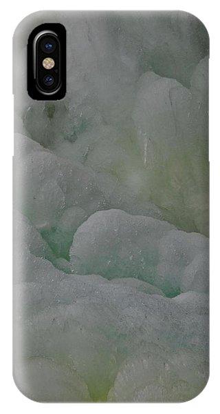 Winter Green IPhone Case