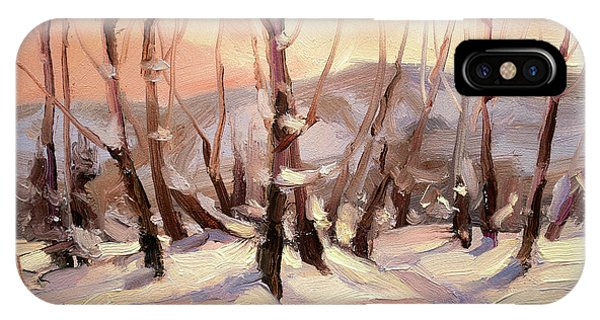 Cold iPhone Case - Winter Grove by Steve Henderson