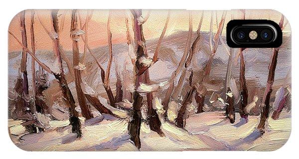 Snowy iPhone Case - Winter Grove by Steve Henderson