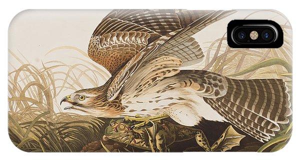 In Flight iPhone Case - Winter Hawk by John James Audubon
