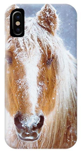 Horse iPhone Case - Winter Horse Portrait by Debi Bishop