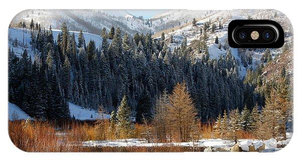 Winter I Big Cottonwood Canyon  IPhone Case