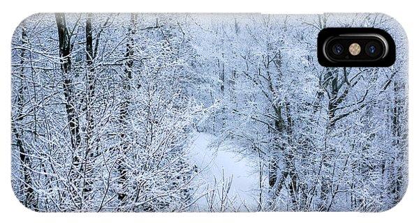 Winter Ice Storm IPhone Case