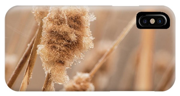 IPhone Case featuring the photograph Winter Ice by Tyson Kinnison