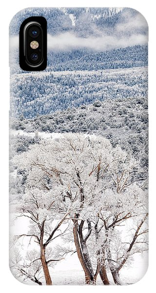 Winter Magic IPhone Case