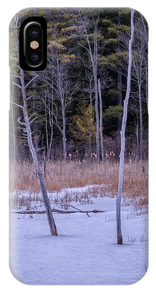 Winter Marsh And Trees IPhone Case