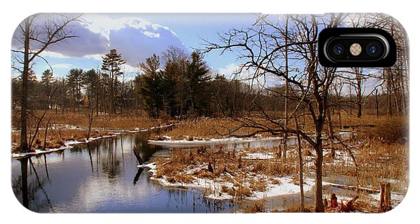 Winter Marsh IPhone Case