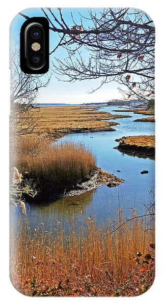 Winter Marsh IPhone Case