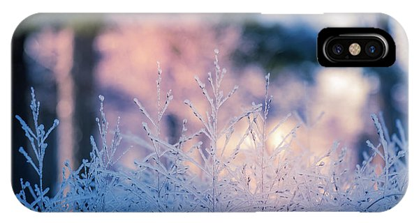 Winter Morning Light IPhone Case