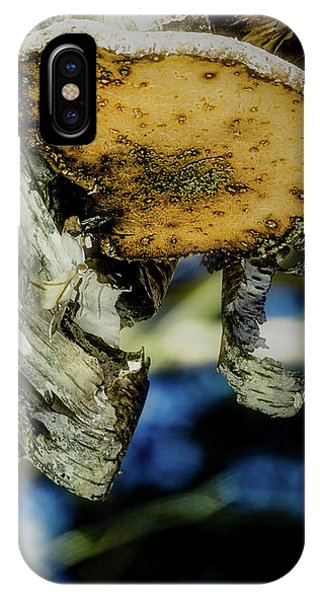 Winter Mushroom IPhone Case