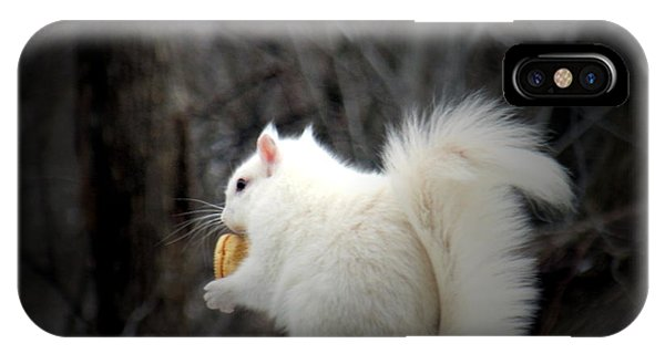 Winter Nibbles IPhone Case