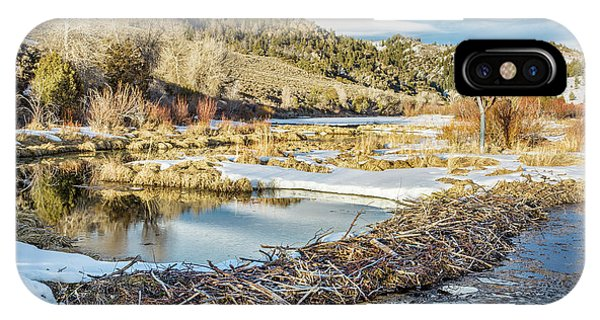 Winter On Beaver Swamp IPhone Case