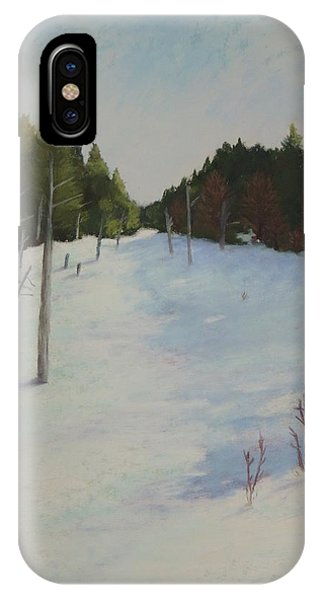 Winter On Moose Pond IPhone Case