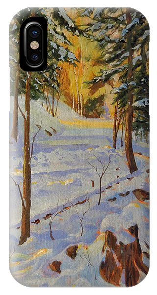 Winter On The Lane IPhone Case