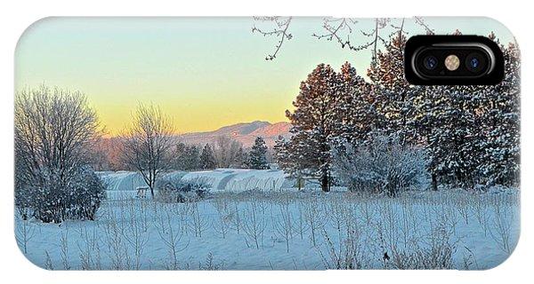 Winter On The Tree Farm IPhone Case