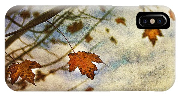 Leaf iPhone Case - Winter On The Way by Rebecca Cozart