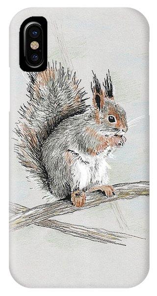 Winter Red Squirrel IPhone Case