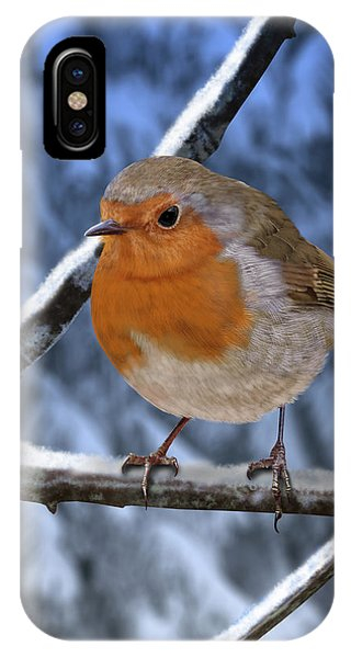 Winter Robin IPhone Case