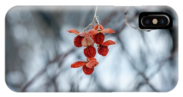Winter Seeds IPhone Case