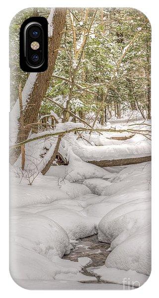 Winter Serenity IPhone Case
