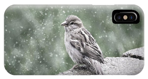 Winter Sparrow IPhone Case