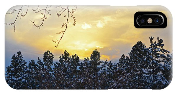 Winter Sunset On The Tree Farm #1 IPhone Case