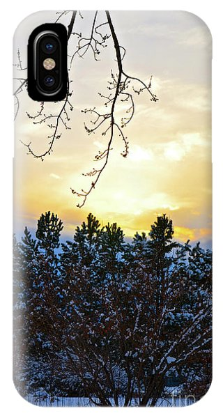 Winter Sunset On The Tree Farm #2 IPhone Case