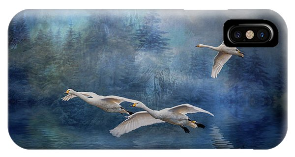 Winter Swans IPhone Case