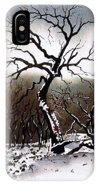 iPhone Case - Winter Tree Stainland by Paul Dene Marlor