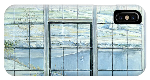Window Pane iPhone Case - Winter Triptych by Timothy Easton