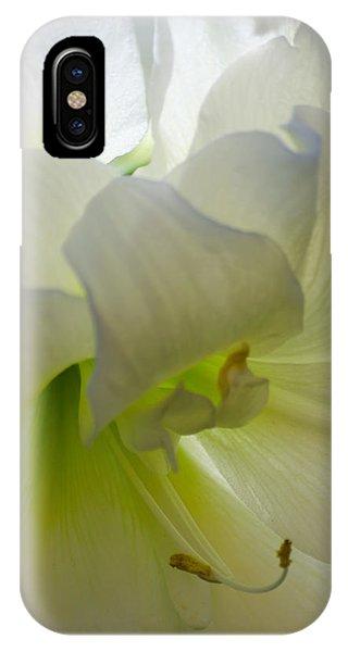 Winter White Amaryllis IPhone Case